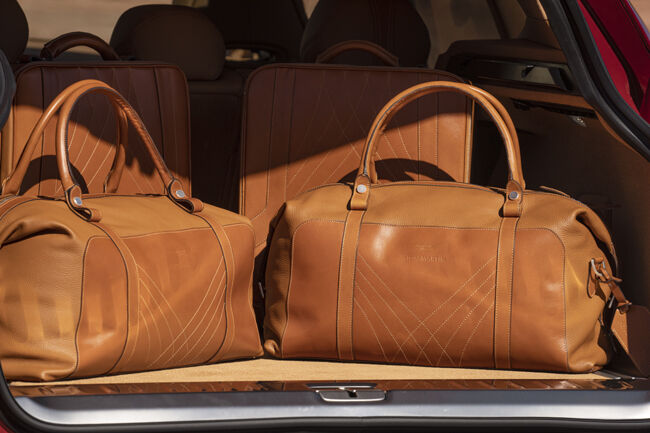 Aston Martin DBX_Luggage Set.jpg